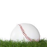 A baseball ball in the grass. Isolated on white background Stock Images
