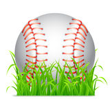 Baseball ball. Stock Image