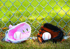 Baseball. Balls in Gloves on Green Grass. Female vs Male Stock Photos