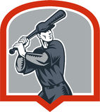 Baseball Batter Batting Woodcut Shield Royalty Free Stock Photo