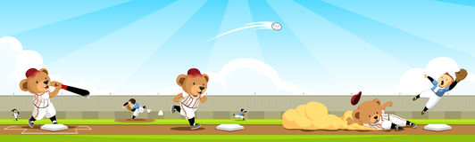 Baseball bear team sequence Royalty Free Stock Image