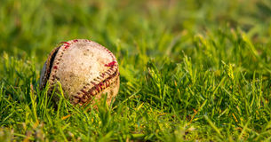 Baseball. Beat up baseball in a field of grass. Tight focus Royalty Free Stock Photography