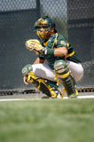 Baseball Catcher Royalty Free Stock Photography