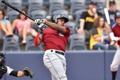 Baseball degli orsi neri di WV - prima stagione Fotografie Stock