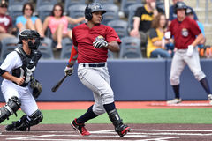 Baseball degli orsi neri di WV - prima stagione Immagini Stock
