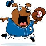 Baseball del cane del fumetto Fotografia Stock