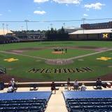 Baseball del Michigan Immagine Stock