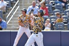2015 baseball del NCAA - TCU @ WVU Immagine Stock