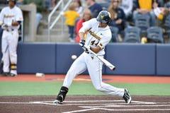 2015 baseball del NCAA - WVU-TCU Immagine Stock Libera da Diritti
