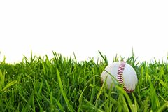 Baseball in Dewy Grass. Old baseball in dewy grass, with white background Royalty Free Stock Image