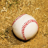 Baseball in the dirt Royalty Free Stock Photography