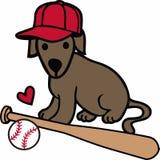 Baseball Dog Royalty Free Stock Photography