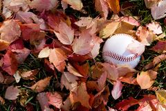 Baseball in fall season Stock Image