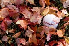 Baseball in fall season Stock Image