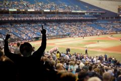Baseball Fans. Fan celebrating a team victory at a baseball game Royalty Free Stock Images