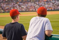 Baseball Fans Stock Image