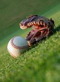 Baseball on the field stock images