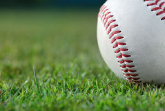 Baseball on the field. Close up of a baseball on the grass Stock Photos