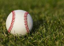 Baseball on the field with grass Royalty Free Stock Photo
