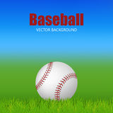 Baseball on the field Royalty Free Stock Photography
