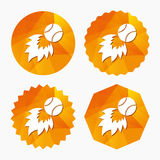 Baseball fireball sign icon. Sport symbol. Triangular low poly buttons with flat icon. Vector Royalty Free Stock Photos