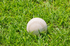 Baseball on the fresh green grass . Royalty Free Stock Images