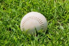 Baseball on the fresh green grass . Stock Photos