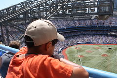 Baseball game. Young boy is watching Blue Jays baseball game in Skydome, Toronto, canada Royalty Free Stock Images