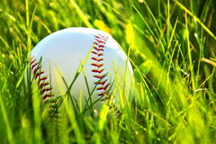 Baseball game. Royalty Free Stock Photography