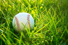 Baseball game. Royalty Free Stock Images