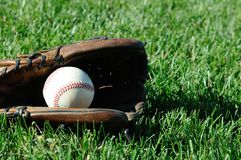 Baseball in Glove On Grass Royalty Free Stock Image
