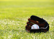 Baseball in Glove on Grass Royalty Free Stock Photo