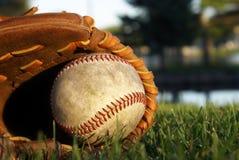 Baseball Glove Laying In Grass Stock Photos