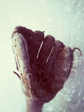 Baseball glove vertical