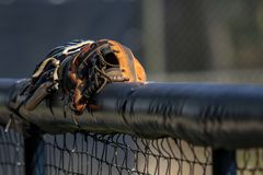 Baseball Gloves in Dugout Royalty Free Stock Image