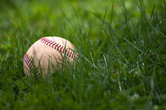 Baseball in the Grass. One aged and worn hardball or baseball laying in the green grass Stock Photography