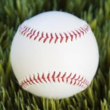 Baseball in grass. Royalty Free Stock Photo