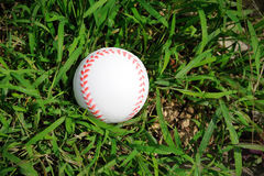 Baseball on the grass. Stock Image