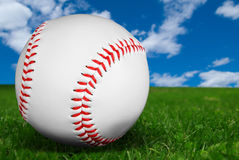 Baseball on grass Stock Image