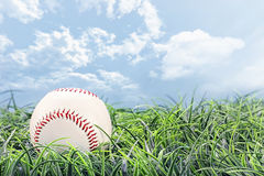 Baseball in Grass Stock Photos