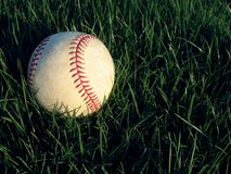 Baseball in grass. Clear vintage baseball in deep green grass Stock Photography
