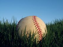 Baseball in grass. Baseball up close in lush green grass Royalty Free Stock Images
