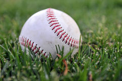 Baseball on grass Stock Photography