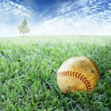 Baseball in grass. A well used scuffed baseball lies in the grass waiting to be picked up. Concept for summer days and playing baseball Stock Image