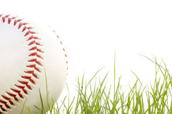 Baseball in the grass. Isolated on a white background Stock Photos