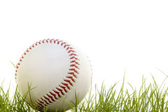 Baseball in the grass. Isolated on a white background Stock Image