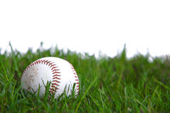 A baseball in the grass. In studio Stock Photography
