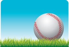 Baseball on the grass. Close up picture of a baseball laying on grass Stock Photography