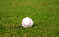 Baseball on grass in baseball field Royalty Free Stock Photography