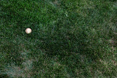 Baseball in grass Royalty Free Stock Photo